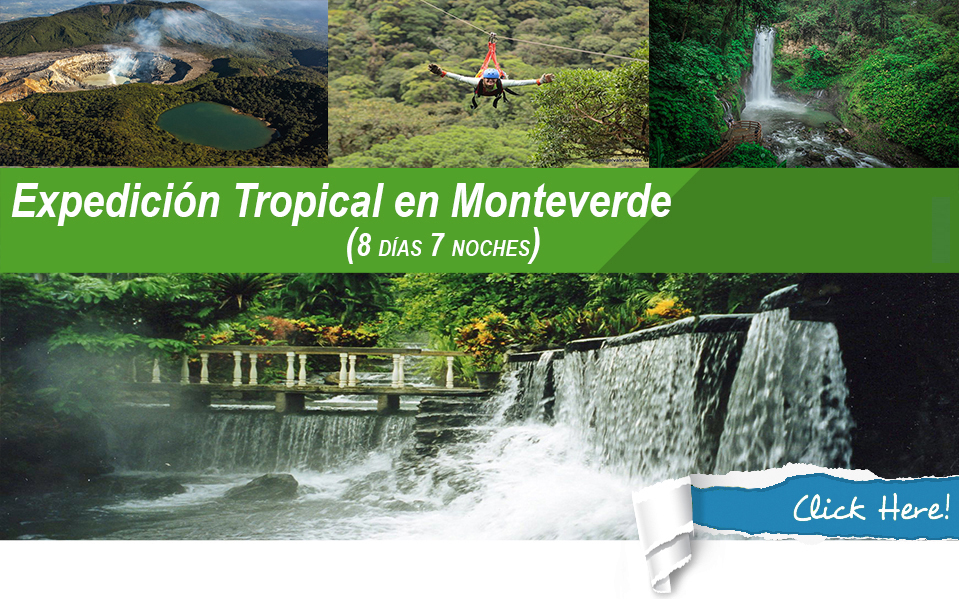 Expedicion Tropical en Monteverde