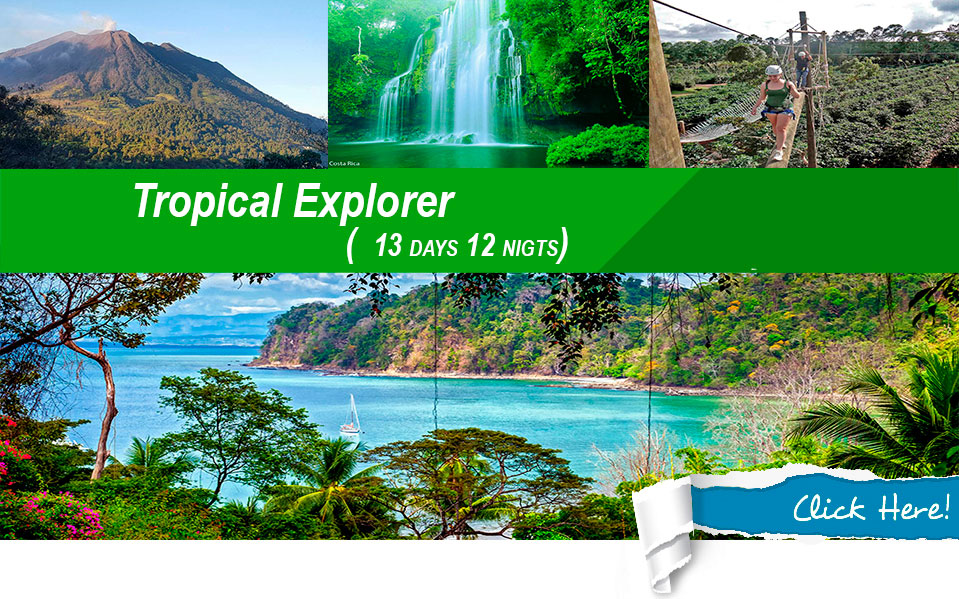 costa rica tropical explorer